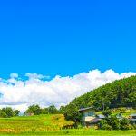 相続財産の評価方法③「農地の評価のポイント」|八王子・多摩の相続なら